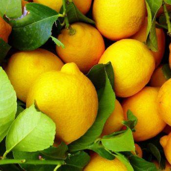 Citrus-Chlorpyrifos-ban-EU-2020